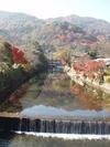 Akikyoto_002