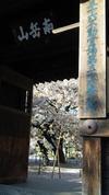 Fukuokasansaku01