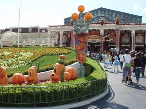 Disneyresort24