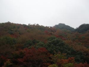Kankakei2