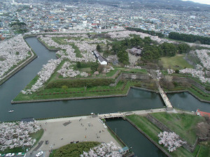 Goryokaku1