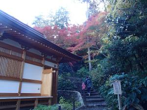 Takahatafudo_6