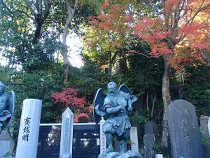Takaosan10_3