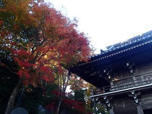 Takaosan12