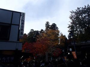 Takaosan2