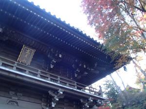 Takaosan9