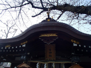 Madasakura3