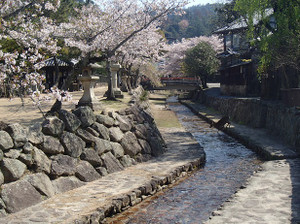 Shikamaturi_4