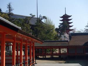 Itukushima_10