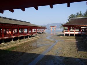 Itukushima_7