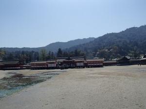 Itukushima_19