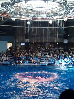 Aquapark_10