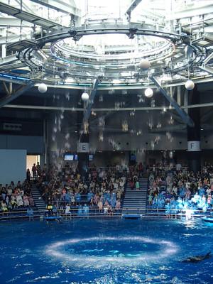 Aquapark_12