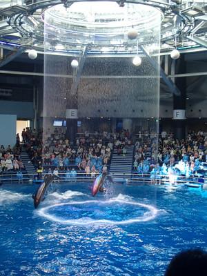 Aquapark_13