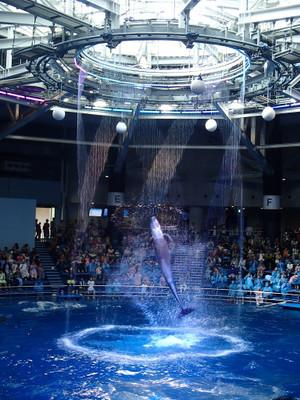 Aquapark_5