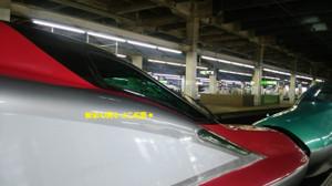 Shinkansenhomu_3