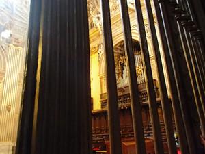 Vaticanel_5