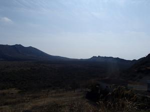 Oshima_4