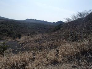 Oshima_8