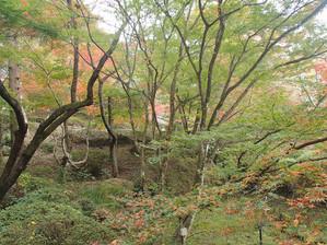 Mifuneyama_10
