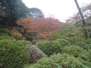 Mifuneyama_3