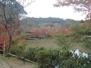 Mifuneyama_11