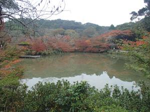 Mifuneyama_12