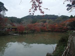 Mifuneyama_13