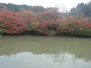 Mifuneyama_18