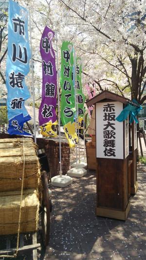 2017413sakura_3