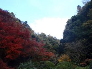 Kiyomizushimane_1
