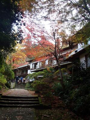 Kiyomizushimane_7