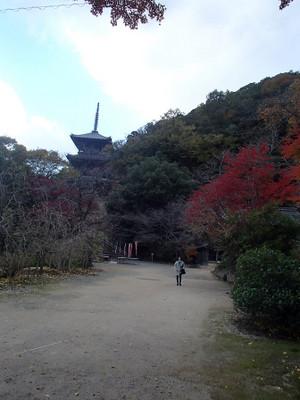Kiyomizushimane_15