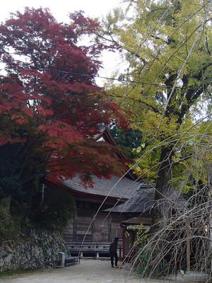 Kiyomizushimane_17
