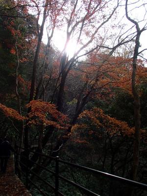 Oninoshitaburui_9