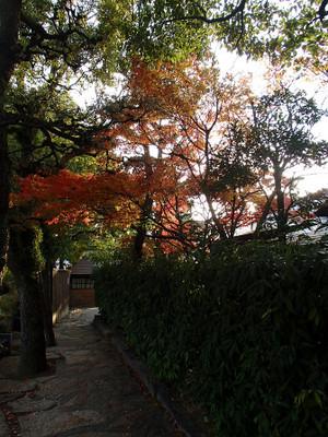 Kurashikiteien_3
