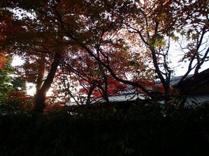 Kurashikiteien_4