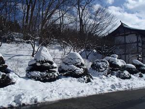 Yukisanpo_1